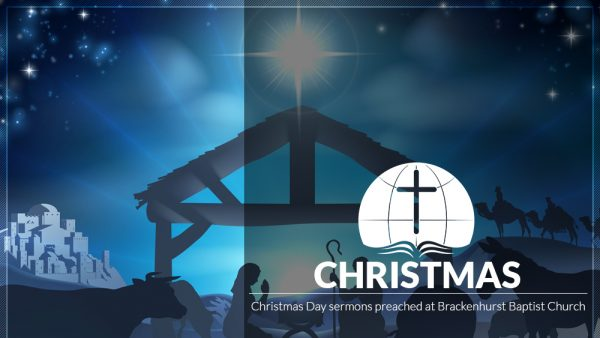 The Christmas Branch (Isaiah 11:1–10) Image