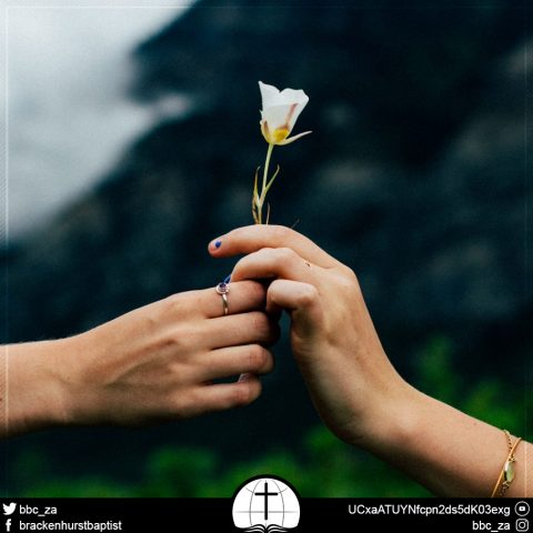 Forgive One Another (Colossians 3:12–13)