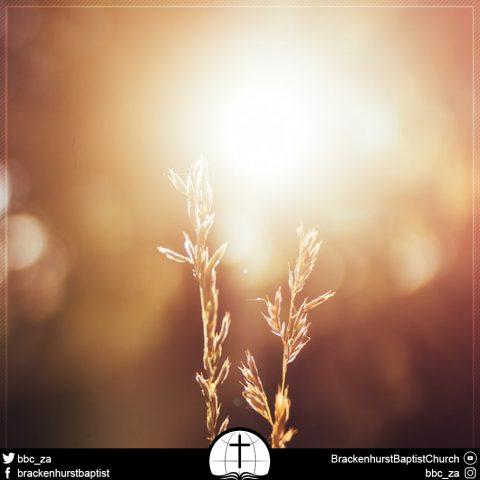 The Long Walk (1 John 1:5–2:6)