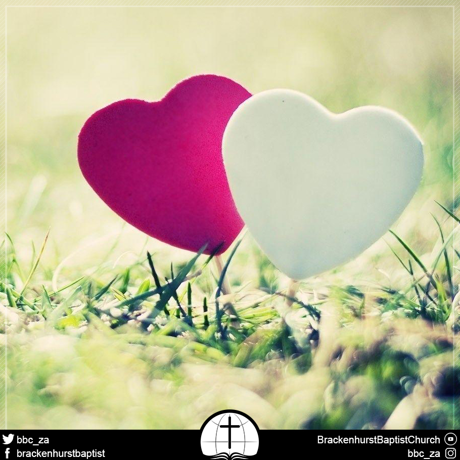 Love to Outdo and Outdo to Love (Romans 12:10)