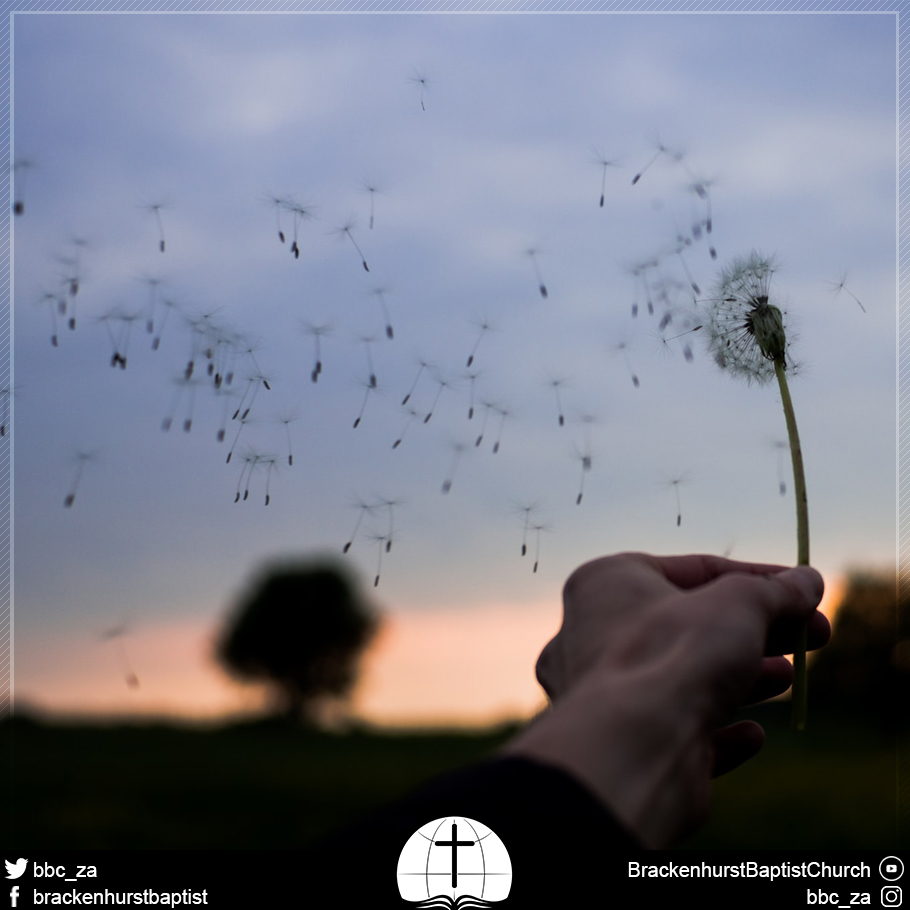 Chasing the Wind (Ecclesiastes 1:12–18)
