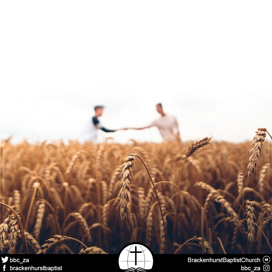 Bearing Precious Seed (Psalm 126:1–6)