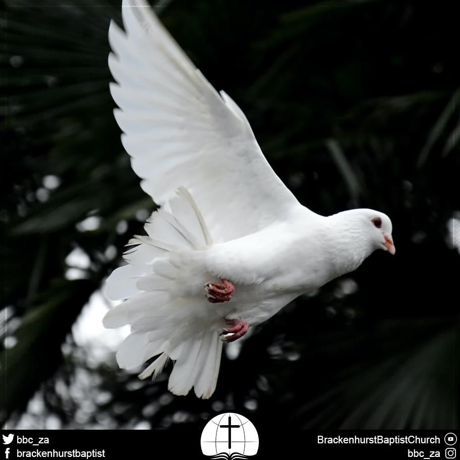 Appreciating the Ascension: A Very Present Help