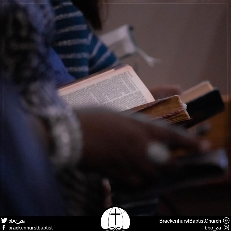 Saints Reading Scripture