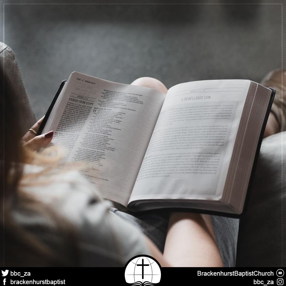 The Spiritual Discipline of Bible Reading (Psalm 1:1–6)